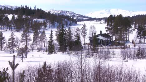 A-beautiful-cabin-deep-ion-a-snowy-wilderness