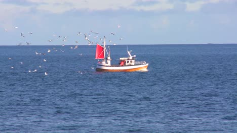 Seagulls-chase-a-fishing-trawler-across-a-bay-in-Norway-1