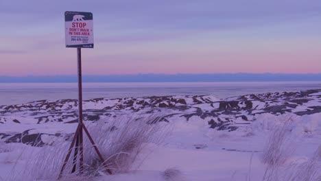 Un-Cartel-Advierte-Que-Hay-Osos-Polares-En-Las-Cercanías