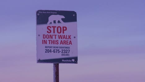 A-sign-warns-that-polar-bears-are-in-the-vicinity-1
