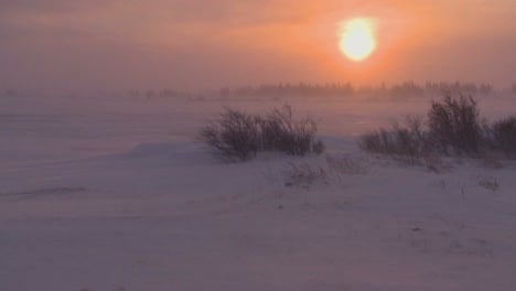 Sunrise-or-sunset-over-frozen-tundra-in-the-Arctic-during-an-intense-blizzard