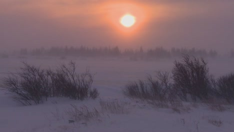 Sunrise-or-sunset-over-frozen-tundra-in-the-Arctic-during-an-intense-blizzard-1