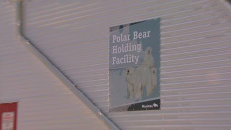 Los-Osos-Polares-Que-Se-Portan-Mal-Están-Confinados-En-La-Cárcel-De-Osos-Polares-En-Churchill-Manitoba-Canadá