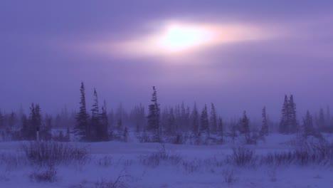 Sicht-Aus-Einem-Tundra-Fahrzeug-Der-Gefrorenen-Tundra-In-Der-Arktis-Während-Eines-Intensiven-Schneesturms-Geschossen