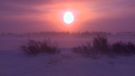 Amanecer-O-Atardecer-En-El-Ártico-Durante-Una-Intensa-Tormenta-De-Nieve
