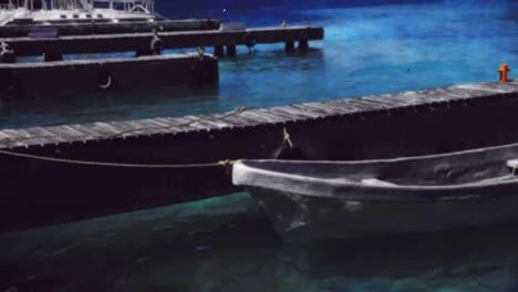 Dolphin-Boat-03