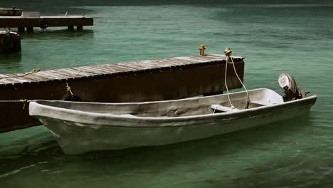 Dolphin-Boat-04