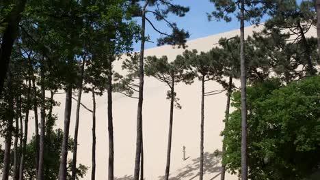 Dunes-Pyla-00