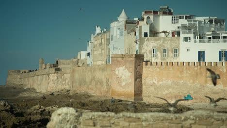 Essaouira-Boats-11