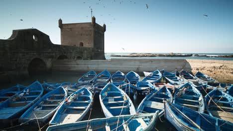 Essaouira-Boats-13