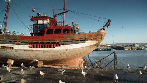 Essaouira-Boats-15