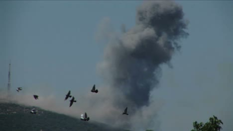 Birds-fly-from-trees-as-a-plume-of-smoke-rises-from-a-rocket-attack-in-the-Israel-Lebanon-war