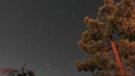 Lapso-De-Tiempo-De-La-Noche-Al-Día-De-Las-Estrellas-Moviéndose-Por-El-Cielo-Y-La-Luz-De-La-Fogata-Parpadeando-En-Un-árbol