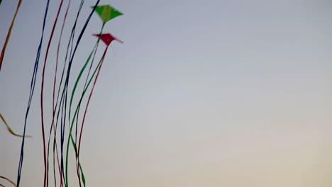 Kites-06