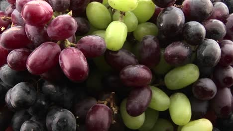 Slow-zoom-into-purple-red-and-green-grapes-sit-in-a-cluster