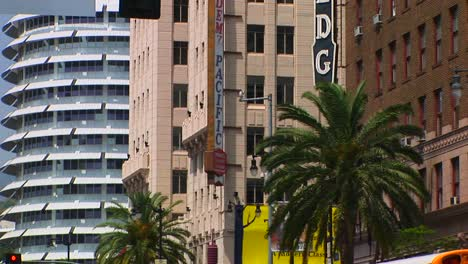 Wind-blows-palm-trees-in-Hollywood