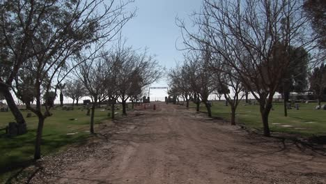 A-welltraveled-treelined-dirt-road-leads-out-to-the-horizon