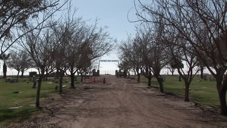 A-person-takes-a-stroll-along-a-treelined-dirt-road-of-a-cemetery