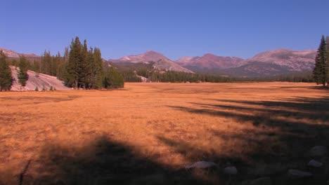Tuolumne-Wiesen-Erstrecken-Sich-In-Richtung-Der-Berge-Im-Yosemite-Nationalpark