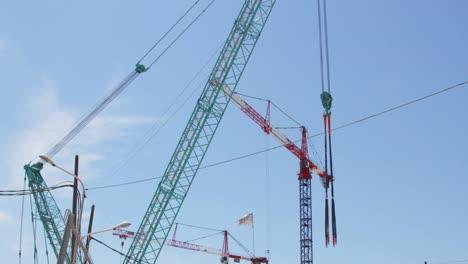 Marseille-Cranes-00