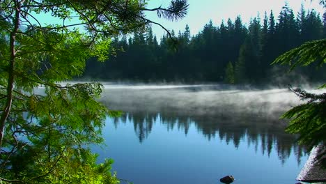 Steam-rises-from-Trillium-Lake-which-is-surrounded-by-pine-trees-near-Mt-Hood-in-Oregon-5