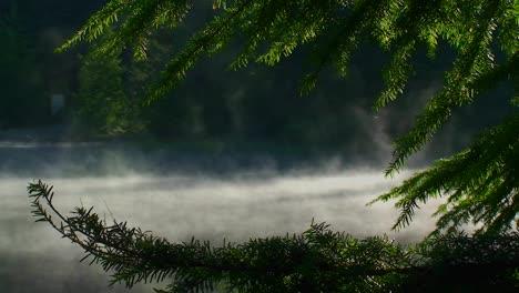 El-Vapor-Se-Eleva-Desde-El-Lago-Trillium-Que-Está-Rodeado-De-Pinos-Cerca-De-Mt-Hood-En-Oregon-6