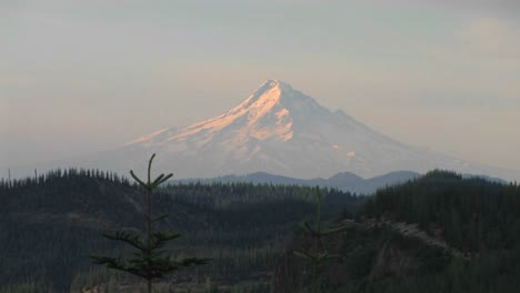 A-snowcapped-mountain-rises-above-a-forest-at-Mt-St-Helens-National-Park