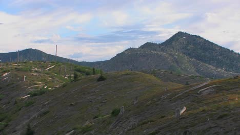 The-slopes-of-Mount-St-Helen-s-and-the-national-park-show-new-growth-years-after-the-eruption