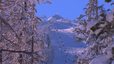 The-chairlift-at-a-busy-ski-resort-is-seen-through-a-covering-of-snow-clad-trees