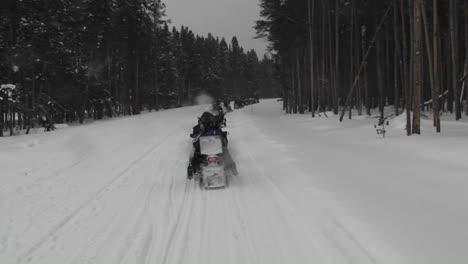 Un-Pov-De-Motos-De-Nieve-Conduciendo-Por-Un-Camino-Forestal-Nevado
