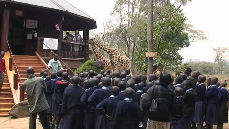 A-group-of-people-listen-to-a-man-speaking-others-stand-inside-the-building-a-man-walks-down-the-stairs-and-two-giraffes-bob-their-heads