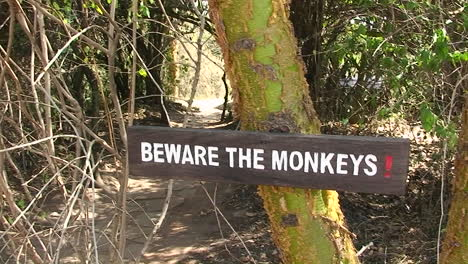 A-solar-water-heater-stands-outside-and-a-sign-instructs-people-to-beware-of-monkeys