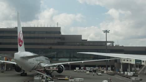 Plane-View-03