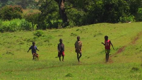 Four-boys-walk-through-a-green-field-with-a-dog