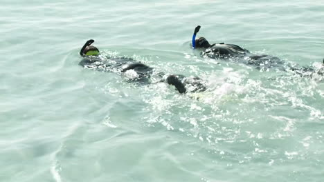 Two-people-swim-by-with-snorkel-gear