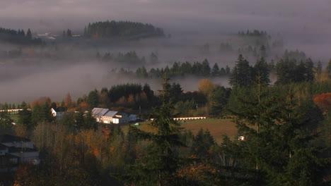 La-Niebla-Se-Cierne-Sobre-La-Región-Vinícola-De-Oregon-