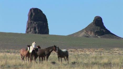 Wilde-Pferde-Grasen-Auf-Einem-Feld-In-Der-Nähe-Großer-Bergformationen-Bei-Shiprock-Arizona