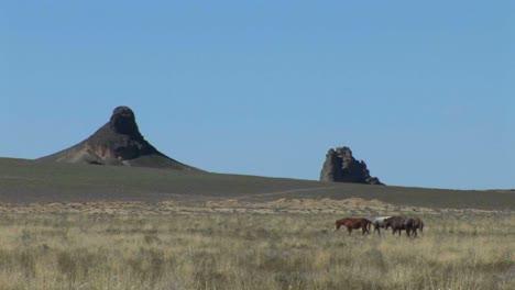 Eine-Klippe-Erhebt-Sich-über-Pueblo-Indianer-Wohnungen-Im-Mesa-Verde-Nationalpark-Colorado-2