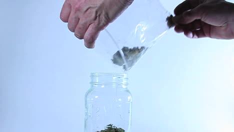 A-man-puts-grass-in-a-jar