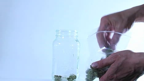 Hands-transfer-marijuana-from-a-plastic-bag-to-a-glass-jar