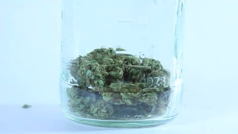 Una-Persona-Deja-Caer-Cogollos-De-Marihuana-Secos-En-Un-Frasco-De-Vidrio