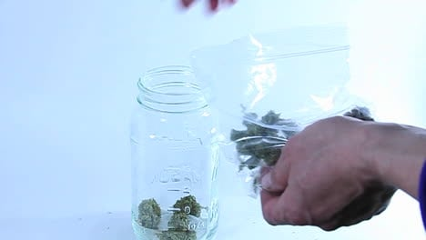 A-person-takes-marijuana-out-of-a-plastic-bag-and-puts-it-into-a-glass-container