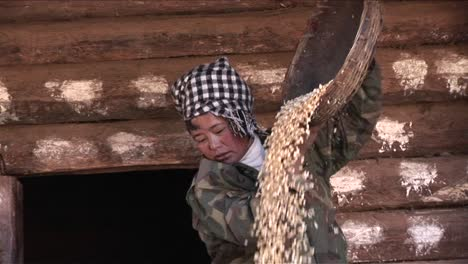 A-peasant-woman-threshes-and-pours-rice-on-a-farm-in-China-1