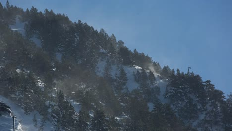 Pyrenees-05