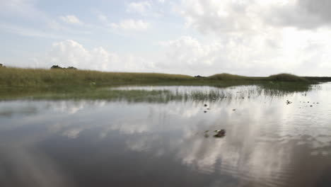POV-from-an-airboa-driving-through-the-Florida-Everglades-