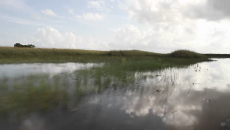 POV-from-an-airboa-driving-through-the-Florida-Everglades-1
