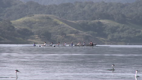 Panning-an-eight-person-rowing-sweep-being-followed-by-their-coach-on-Lake-Casitas-in-Oak-View-California