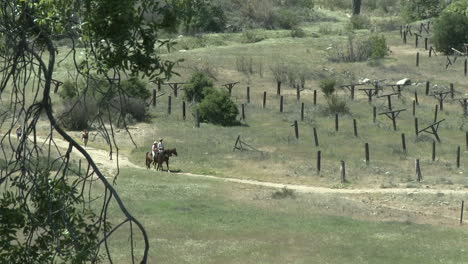 Two-hikers-and-horse-riders-on-a-trail-on-the-Ventura-River-Preserve-in-Ojai-California