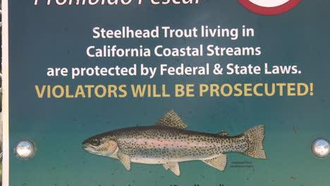 Incline-Hacia-Abajo-En-Un-Signo-De-Prohibición-De-Pesca-De-Truchas-Steelhead-En-Peligro-De-Extinción-En-El-Río-Ventura-En-Ojai-California