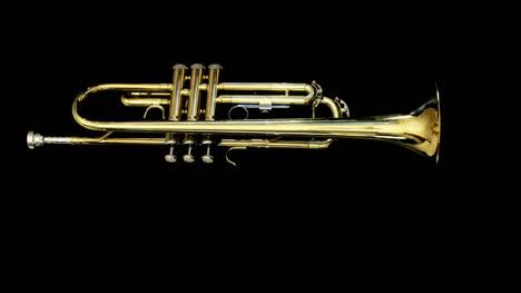 Trumpet-08